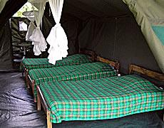 6 Days Kenya Highlight Camping Safari Tour
