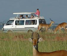 3 Days Masai Mara Camping Safari Tour