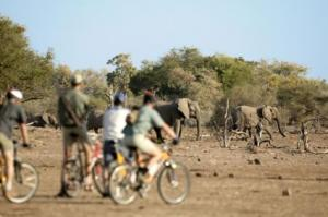 Cycling Safaris In Kenya
