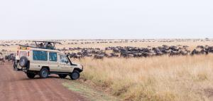 7 Days Amboseli, Aberdares, Lake Nakuru, Masai Mara Safari Tour Packages