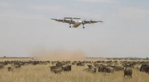 3 Days Masai Mara Flight Safari From Mombasa And Diani Tour Packages