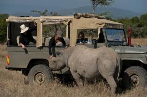 Game drive at Ol Pajeta